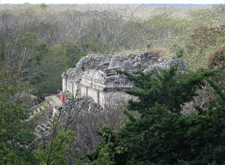 A Jaguar Temple and a Stray Kitten