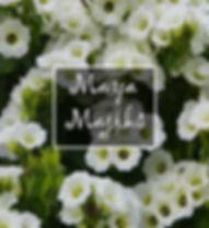 maya majiks oracle cards
