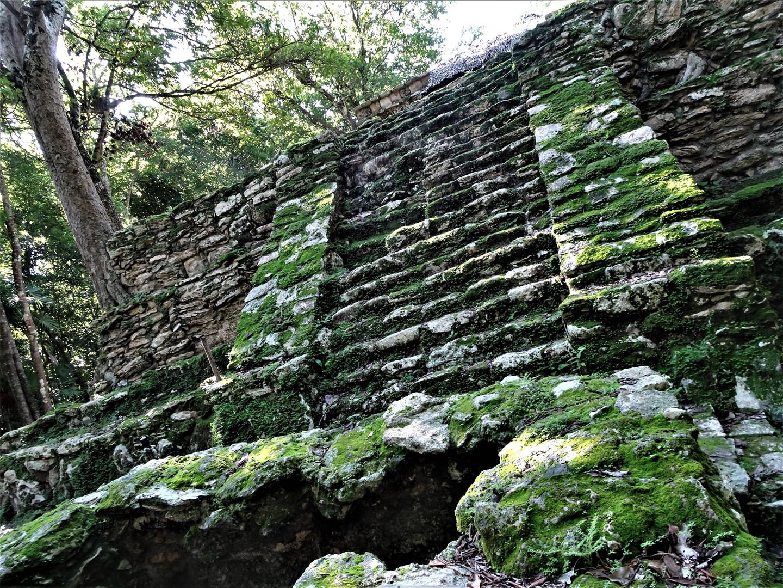 muyil ruins steps moss.jpg