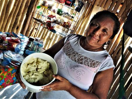 The Story of Maya Corn