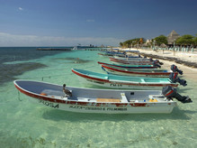 The Secret Nature of a Sleepy Fishing Village: Puerto Morelos