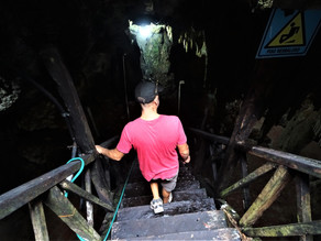What Happened in This Cenote?