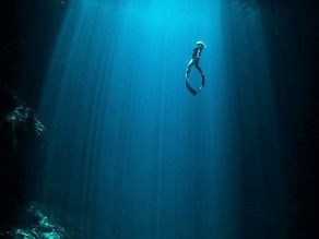 Cryptozoology in a Sacred Cenote