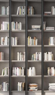 Steiner Bookshelves.jpg