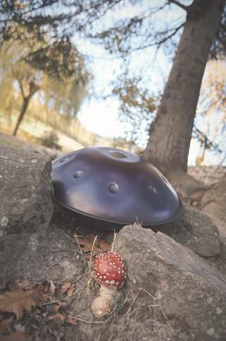 Mushroom ostara