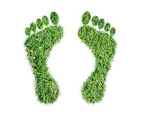 Green grass ecological footprint concept