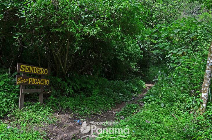 sendero (1)