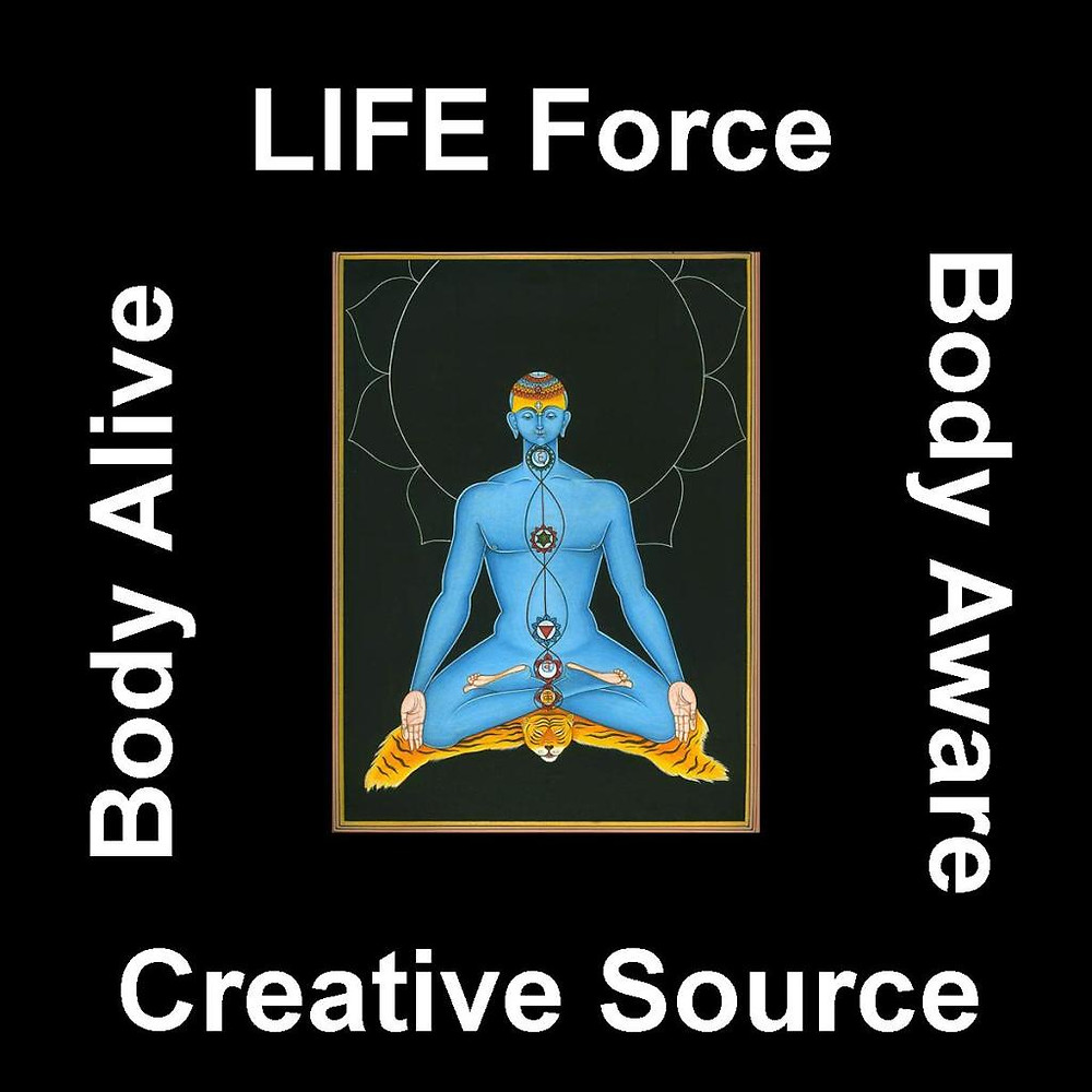 LIFE Force - Creative Source Body Aware - Body Alive March 6 2013 7:00pm to 10:00 pm Awaken Studio Toronto www.phillipcoupal.ca