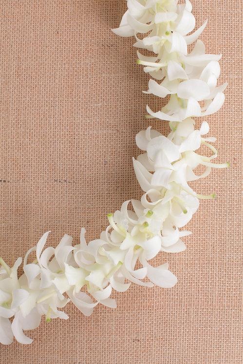 LEI-S (White)