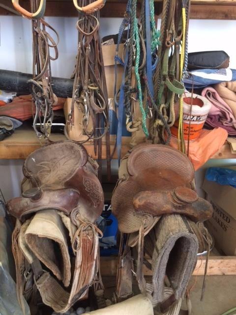 Ranch Saddles_edited