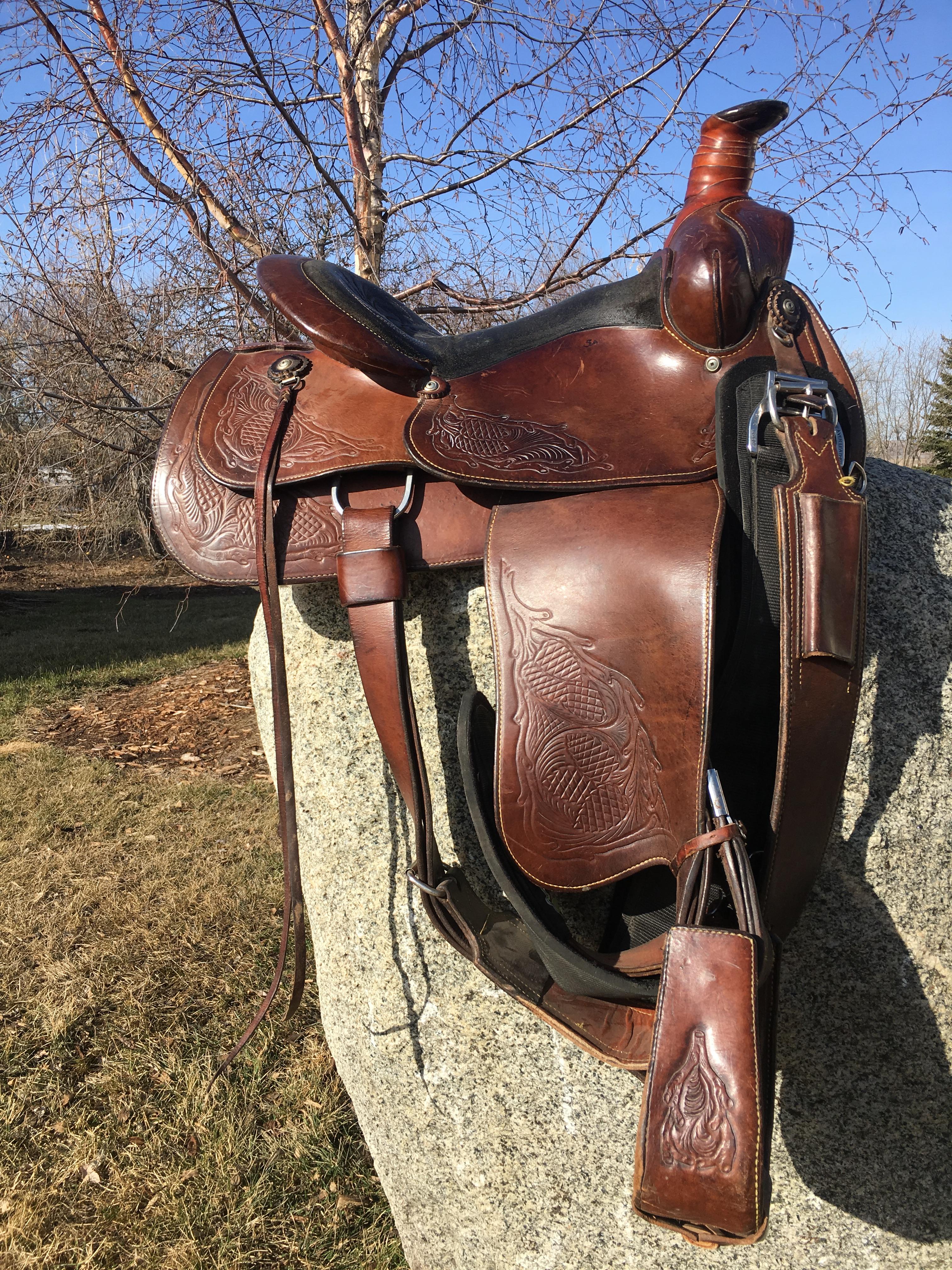 Eamor's Saddle 1