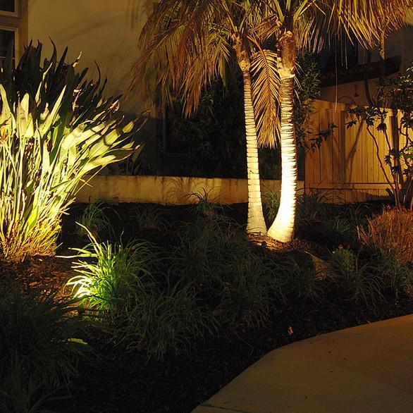 LED Pathway and Spotlight Landscape Lighting