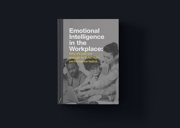 Klaus_Ebook_Emotional-Intelligence-in-th