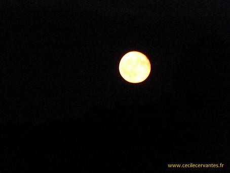 Ronde comme la lune...