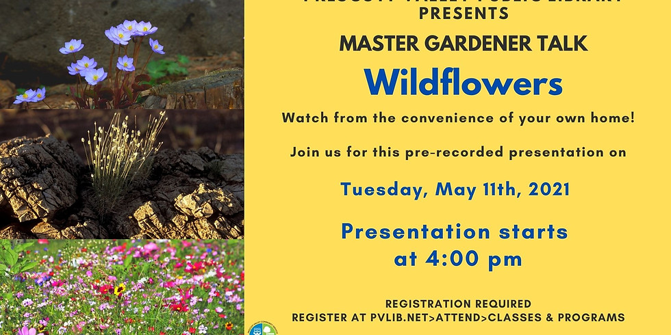 Master Gardener May 11th, 2021: Wildflowers – Registration Required – Virtual Pre-recorded