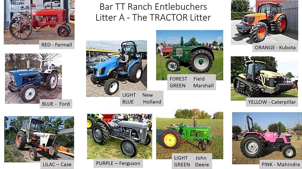 A Litter Tractors.jpg