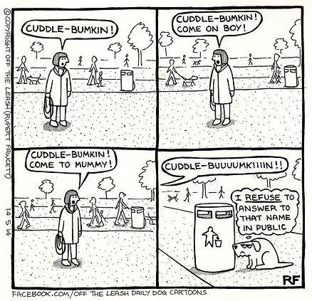 funny-dog-cartoons-off-the-leash-18-5888