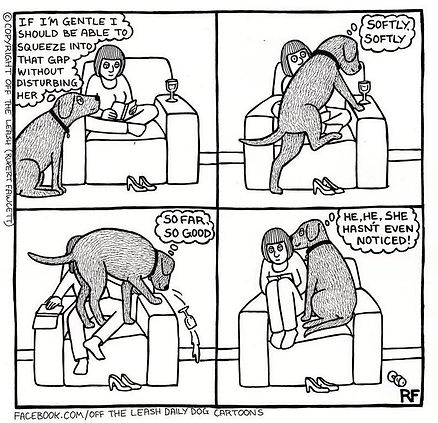 funny-dog-cartoons-off-the-leash-147-588