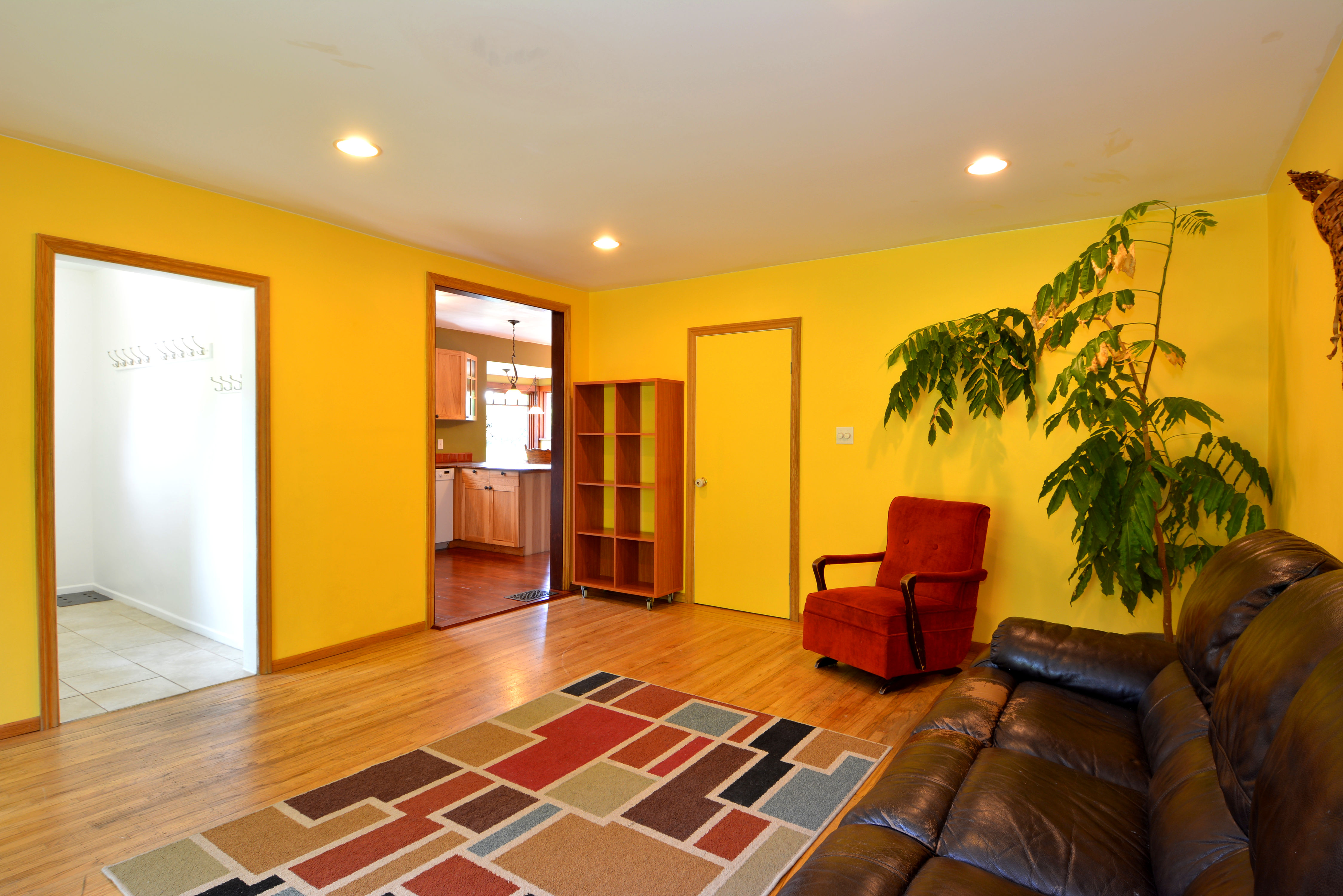 Living Room: 17' x 9'