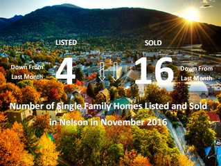 New Listings vs. Sold Listings for Nelson in the Month of November