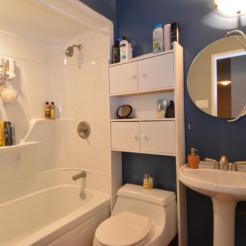 Nelson Real Estate 409 West Richards Street Bathroom