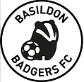 basildon badgers football club