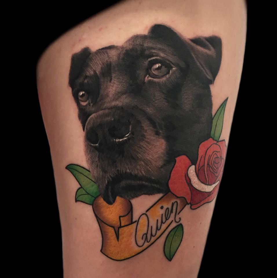 Chris_Hautundliebe_Tattoo_Hundeportrait.