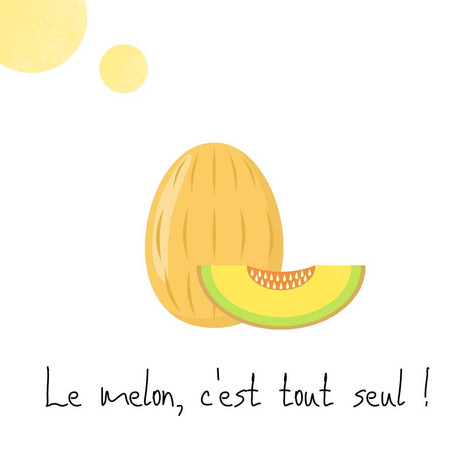Melon - Ayurvéda