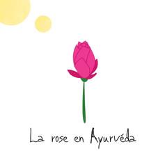 Rose - Ayurvéda