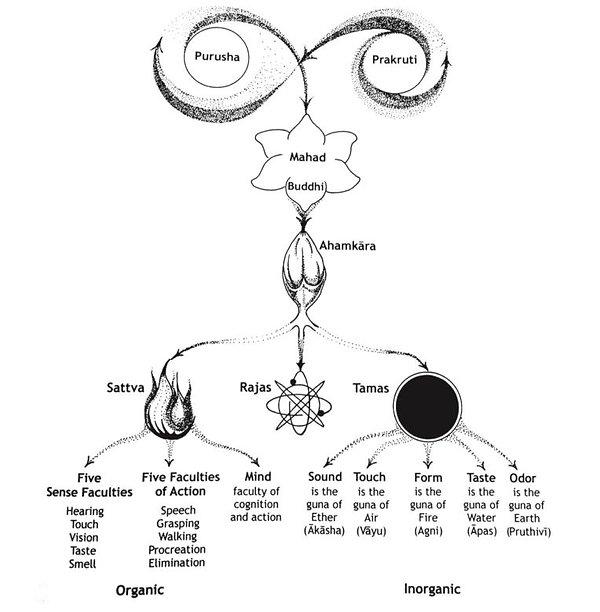 Sankhya-chart-lad.jpg
