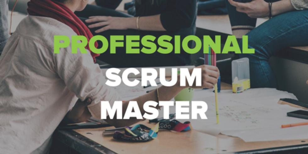 Professional Scrum Master Studio