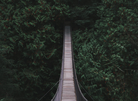 Scrum Masters, your relationship with HR is THE workplace bridge to build!