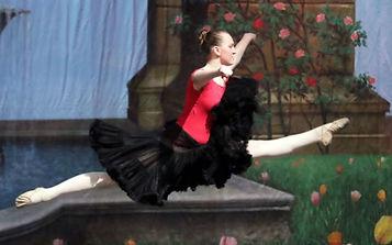 wildflowerdance.jpg
