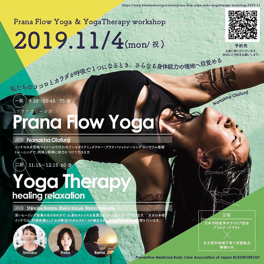 Prana Flow Yoga & YogaTherapy workshop 2019-11