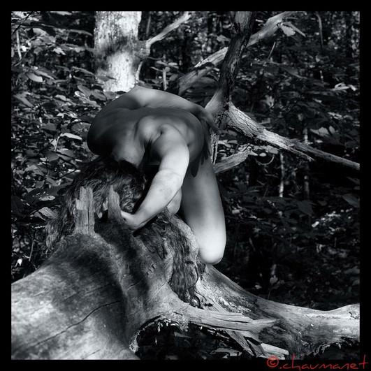 Photo credit: Christophe Chaumanet