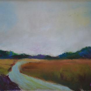 Salt Marsh Meadows