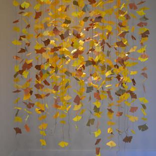 Autumn Gingko