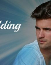 The Wedding (Lux) by Jennifer L. Armentrout [Review]