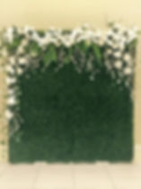 White and Green feature wall.jpg