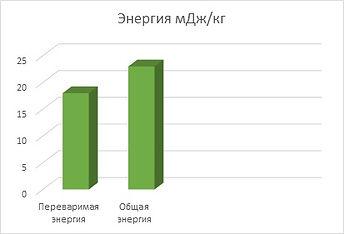 Биоритм Оптима Энергия.jpg