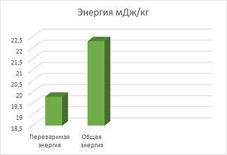 биоритм Эко энергия.jpg