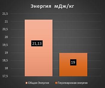 форель рост энергия.jpg