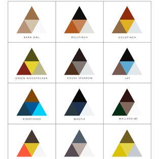 Triangle Colour Chart - small