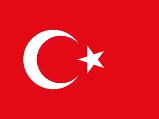Car seat regulations in Turkey