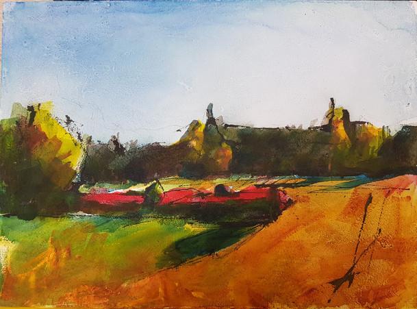 Fields in August