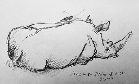Magpie's Friend
