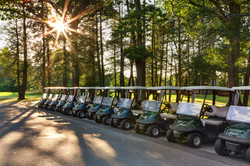 Fleet of carts