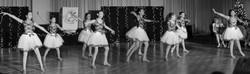 KIDS BALLET AND JAZZ oc dance