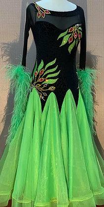 Ballroom Dress Black& Green for Rental