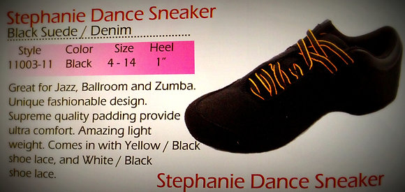 Zumba and Ballroom Practice Shoes